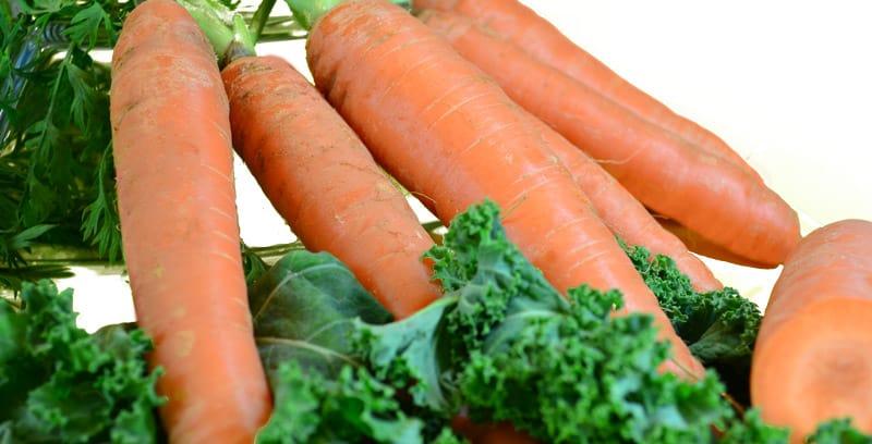 Karotten oder Möhren sind sehr gesund