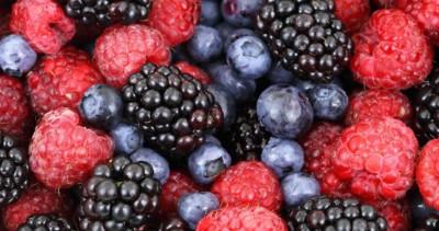 Heimische Beeren sind Superfood